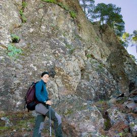 In On the trail of Helianthemum bystropogophyllum