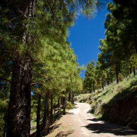 ruta_cueva_de_los_candiles-012