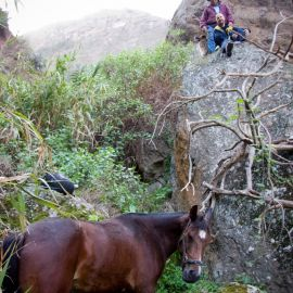 Horse in the Barranco