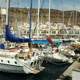 ferry-mogan-blue-bird-020