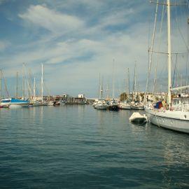 ferry-mogan-blue-bird-024