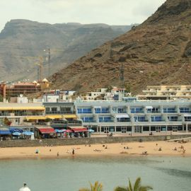 ferry-mogan-blue-bird-034