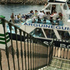 ferry-mogan-blue-bird-035
