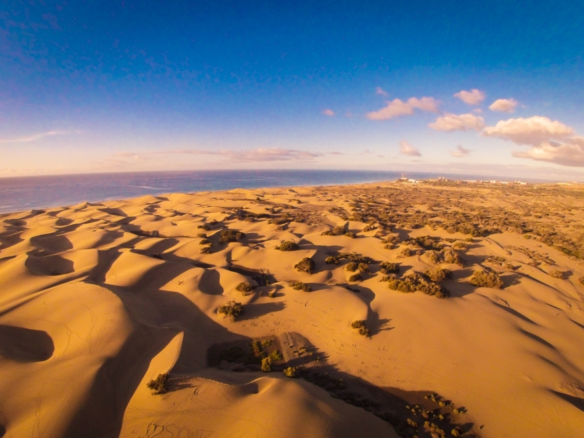 The Maspalomas dunes in south Gran Canaria