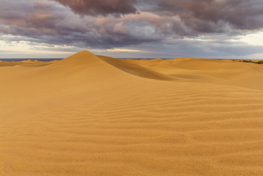 The Maspalomas dunes have returned to their pristine natural form after a few weeks of Gran Canaria lockdown